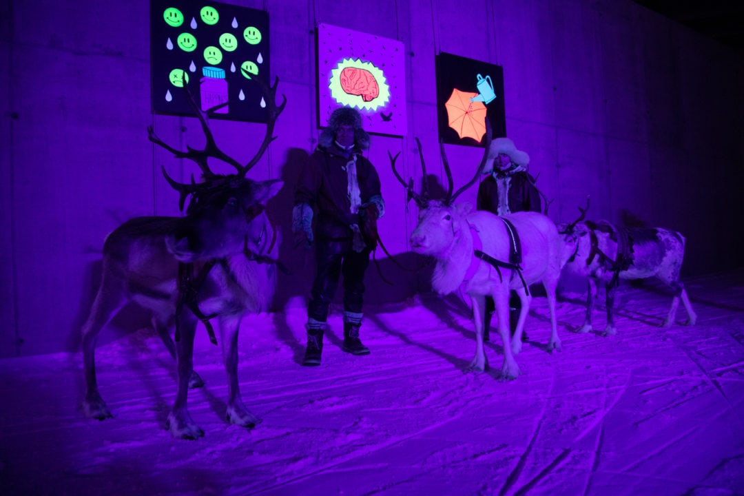 Light art and reindeer at Polar Night Light Festival in Ruka Kuusamo Finland 2020.