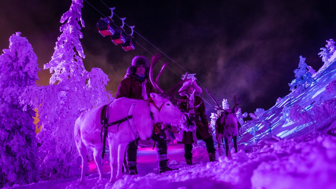Kujala Reindeer Farm taking part in Polar Night Light Festival in Ruka Kuusamo Finland 2020.