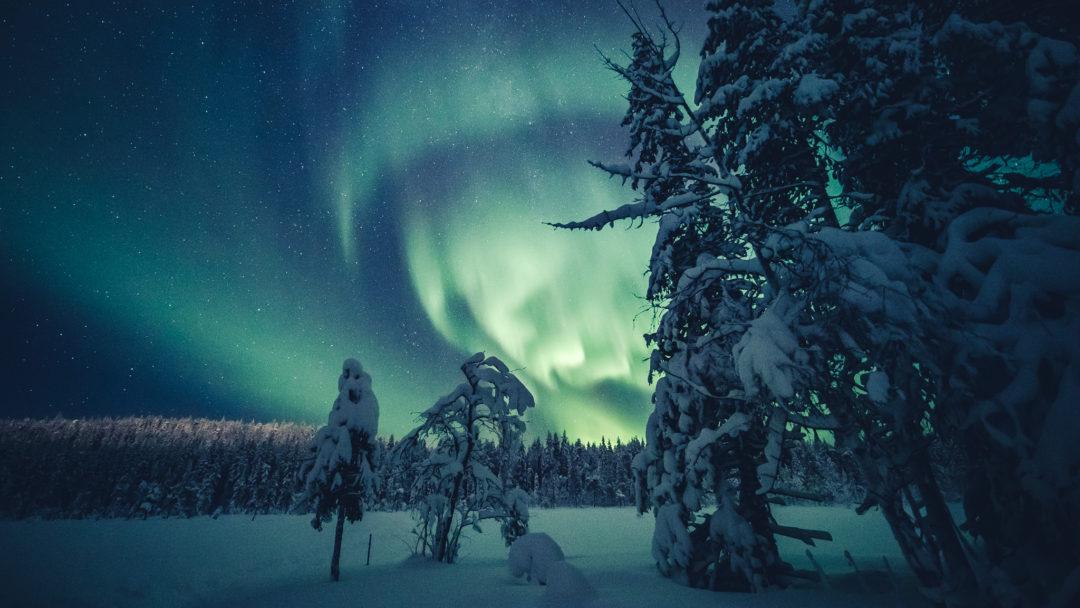 Northern Lights 18.12.2019 in Ylläs Lapland Finland. Photo by Alexander Kuznetsov / All About Lapland