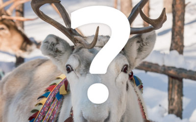 Is there future for tourism in Lapland? New entry rules explained!